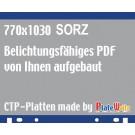 Auf Plattenformat 770x1030 vom Kunden aufgebaut!