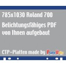 Auf Plattenformat 785x1030 vom Kunden aufgebaut!